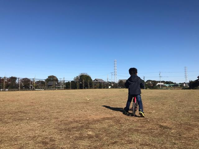 流山総合運動公園の芝生エリア