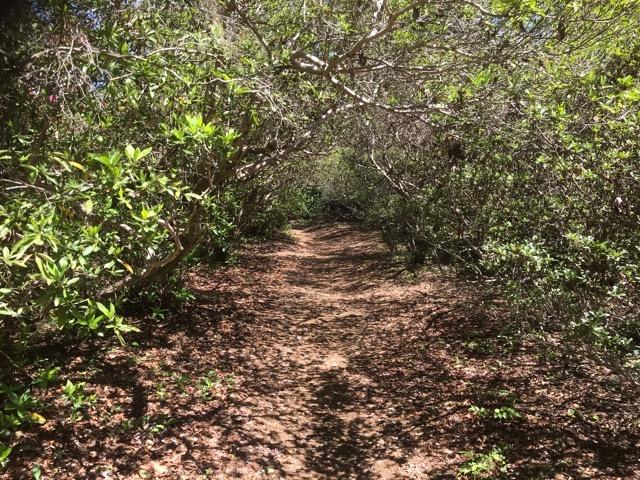 清水公園を散歩する